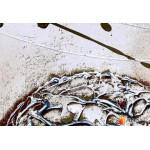 Модульная картина, абстракция ART.: KAM0239