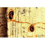 Модульная картина, абстракция ART.: KAM0356