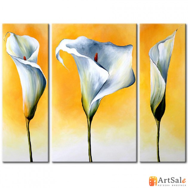 Модульная картина цветы каллы, ART.: KCC0115