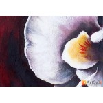 Модульная картина орхидеи, ART.: KCC0382