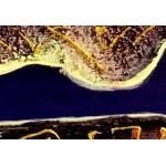 Интерьерные модульные картины ART.: KIM0034
