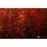 Интерьерные модульные картины ART.: KIM0220