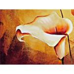 Картины цветы, ART: FS0112